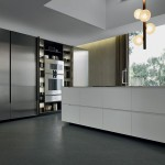 Contemporary wood veneer / stainless steel kitchen